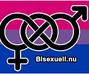 ny bisexuell kuk suger